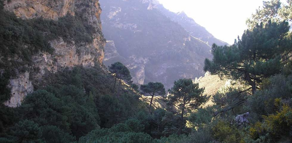 Guided Countryside Walks and Mountain Hikes Around Nerja & Frigiliana